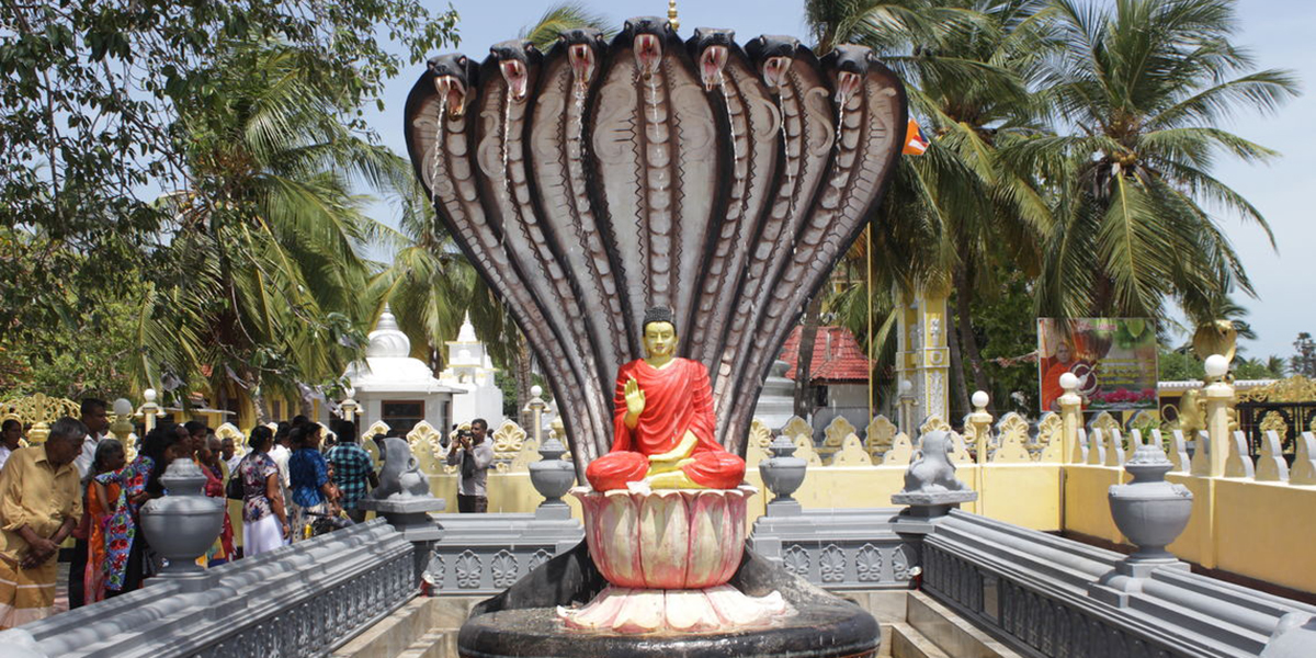 Jaffna town city tour/Point pedro/Nagaeepa